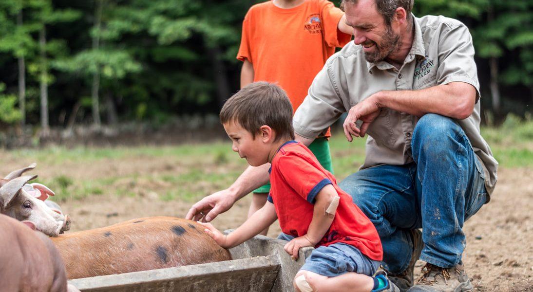 Family raising pigs