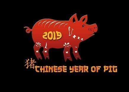 2019 Chinese Year of the Pig